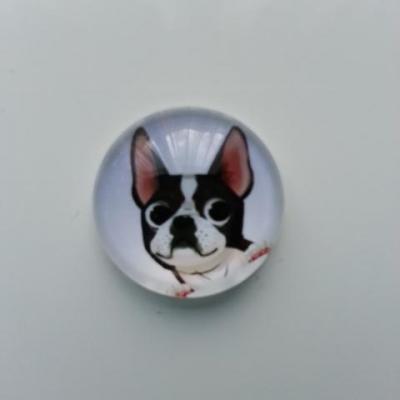 cabochon en verre chien 20mm (2)