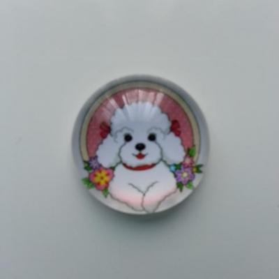 cabochon en verre chien 20mm (1)