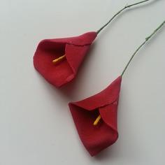 Decoration florale lot de 2 fleurs arum bordeaux fleu 9075612 20170227 1042432a57 808e3 236x236
