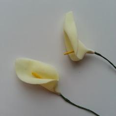 Decoration florale lot de 2 fleurs arum ivoire fleur 5 9075621 20170227 104301daea 2a252 236x236