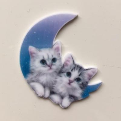 cabochon en resine plat  chatons sur la lune  42*42mm