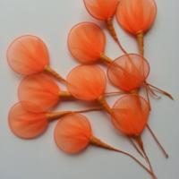 Lot de 10 raquettes en collant sur tige pour dragées ou fleurs en nylon orange
